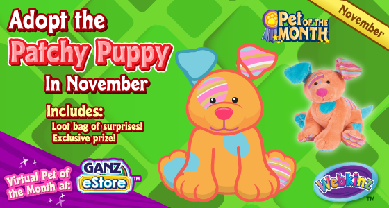 patchy_puppy_pet_of_the_month_november