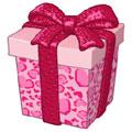 Lovely-Leopard-Gift