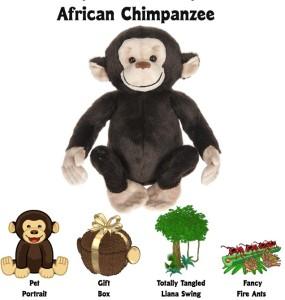 AfricanChimpanzee