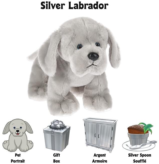 SilverLabradorPsiPsf