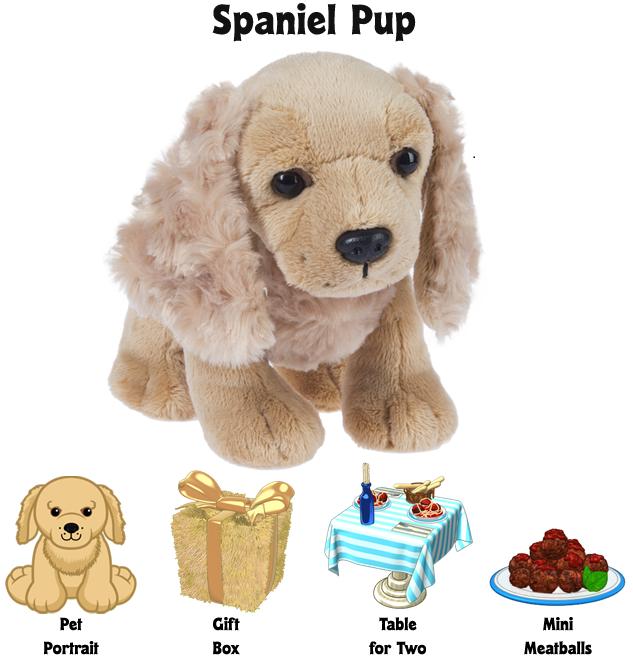 spaniel-pup